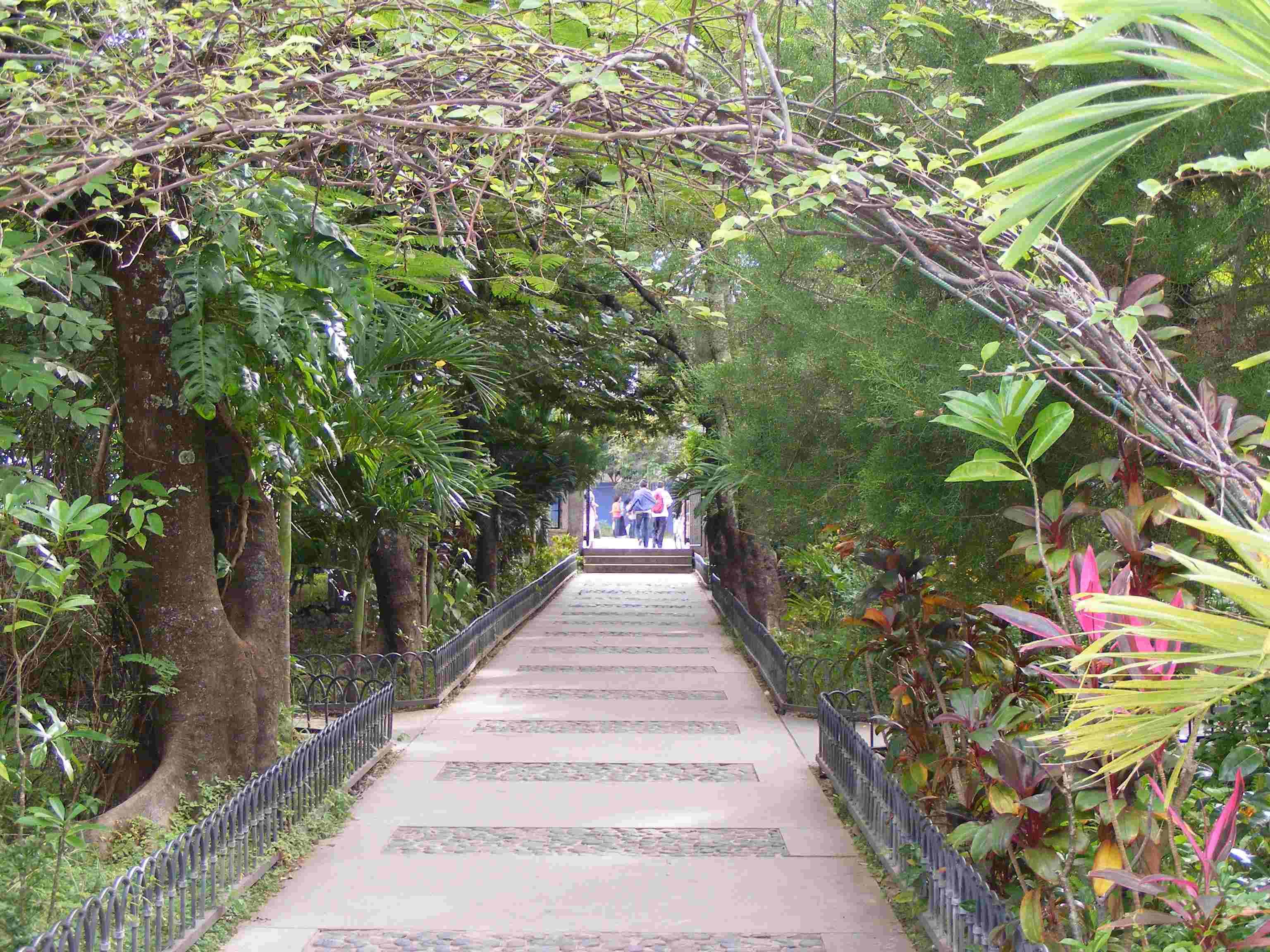 Park in Somoto